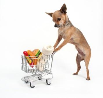 Dog App Store